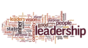 Where does leadership fit?