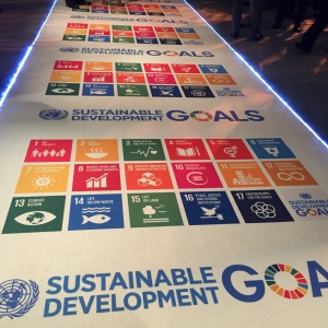 The SDG carpet. Now that's gonna change the world.